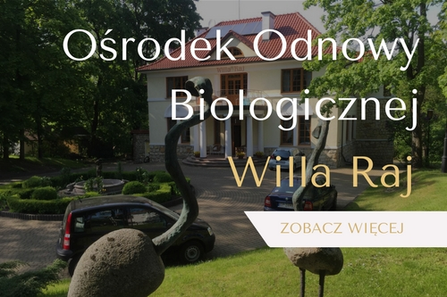 willa-raj-spa-naleczow-medycyna-estetyczna